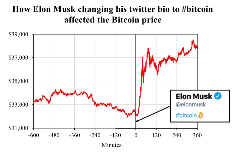 Elon Musk Crypto Influencer
